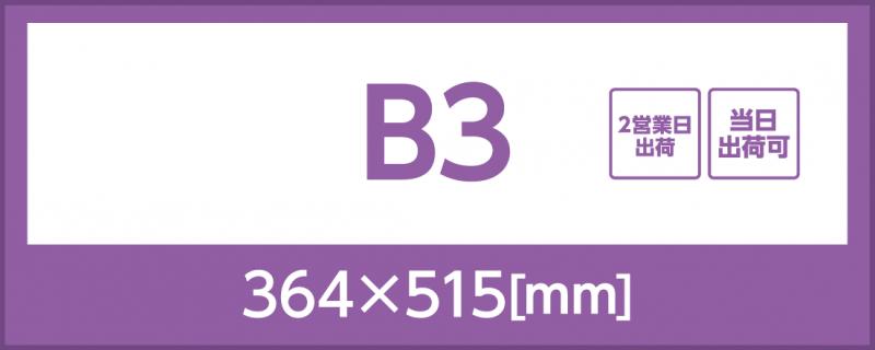 光沢紙(B3)
