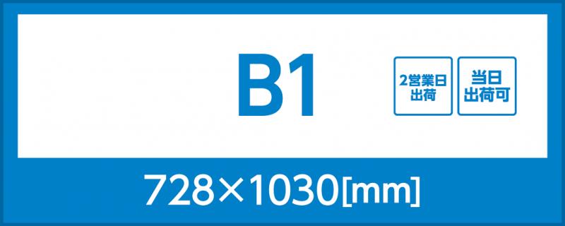 バックライトフィルム(B1)