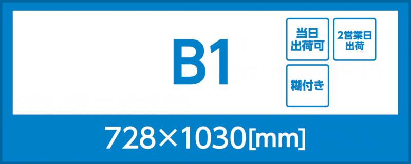 バックライトフィルム(B1)(糊付き)