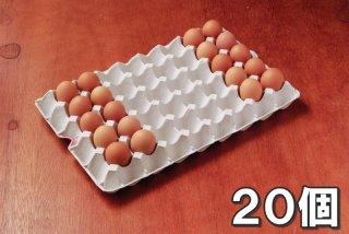 【初回お試し】自然卵 20個