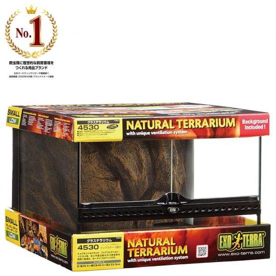 ジェックス エキゾテラ グラステラリウム 4530 ガラス飼育ゲージ 飼育用品