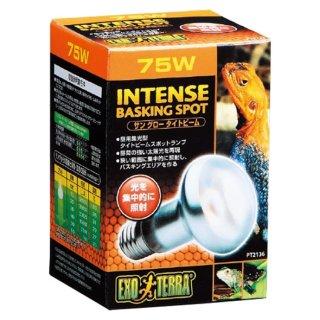 ジェックス エキゾテラ サングロータイトビームバスキング スポットランプ75W 飼育用品