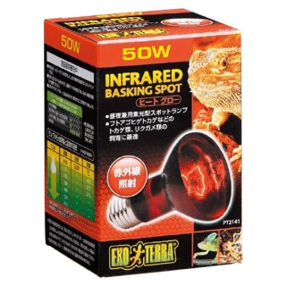 ジェックス エキゾテラ ヒートグロー 赤外線放射 スポットランプ 50W  保温球 昼夜兼用集光型 飼育用品
