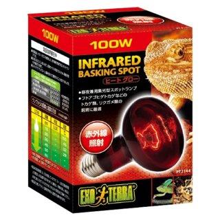 ジェックス エキゾテラ ヒートグロー 赤外線放射 スポットランプ 100W  保温球 昼夜兼用集光型 飼育用品