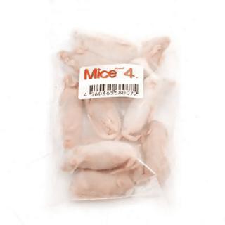 冷凍Mice4 ピンクMice-L 10匹