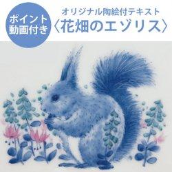 【ポイント動画付きテキスト】花畑のエゾリス