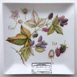 【講座】全2回 プレ講座 石澤講師/植物標本を描く 〜ブラックベリー〜 ※対面教室(浅草橋)の申込ページです。必ず下記【確認事項】をご確認下さい