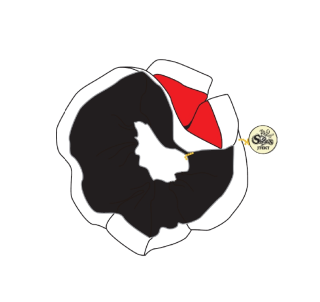 <img class='new_mark_img1' src='https://img.shop-pro.jp/img/new/icons14.gif' style='border:none;display:inline;margin:0px;padding:0px;width:auto;' />シュシュ
