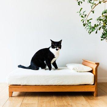 ラフィネ ベッド for CAT