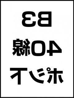 B3・40線・ポシ・膜面下の商品画像