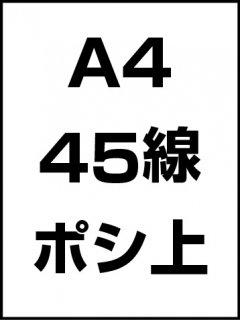 A4・45線・ポシ・膜面上の商品画像