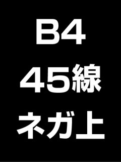 B4・45線・ネガ・膜面上の商品画像