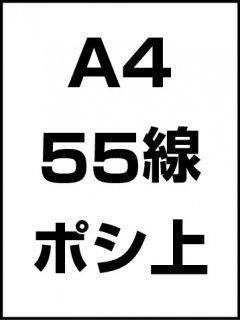 A4・55線・ポシ・膜面上の商品画像