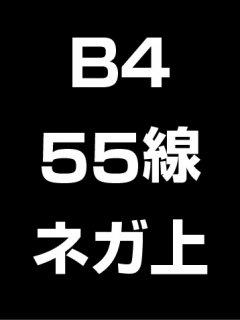 B4・55線・ネガ・膜面上の商品画像
