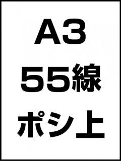 A3・55線・ポシ・膜面上の商品画像