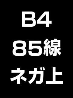 B4・85線・ネガ・膜面上の商品画像