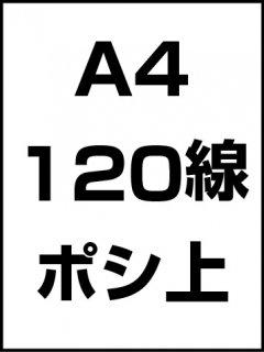 A4・120線・ポシ・膜面上の商品画像