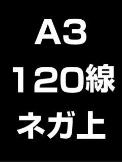A3・120線・ネガ・膜面上の商品画像