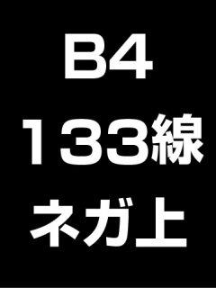 B4・133線・ネガ・膜面上の商品画像
