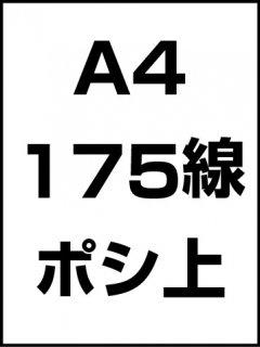 A4・175線・ポシ・膜面上の商品画像
