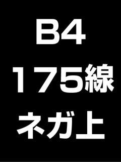 B4・175線・ネガ・膜面上の商品画像