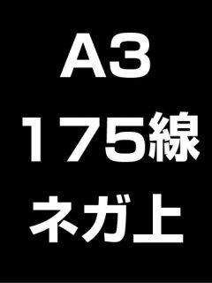 A3・175線・ネガ・膜面上の商品画像