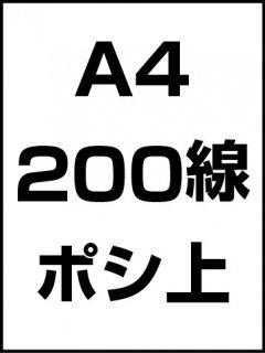 A4・200線・ポシ・膜面上の商品画像