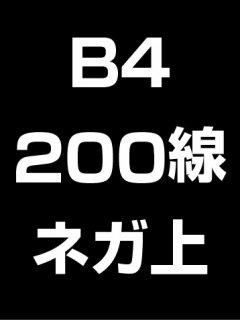 B4・200線・ネガ・膜面上の商品画像
