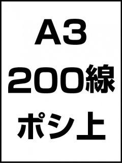 A3・200線・ポシ・膜面上の商品画像