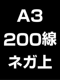 A3・200線・ネガ・膜面上の商品画像