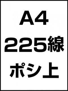 A4・225線・ポシ・膜面上の商品画像