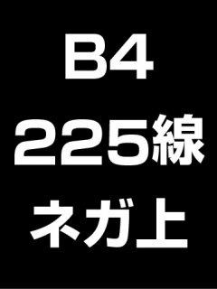 B4・225線・ネガ・膜面上の商品画像