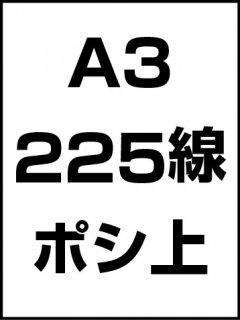 A3・225線・ポシ・膜面上の商品画像