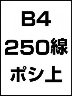 B4・250線・ポシ・膜面上の商品画像