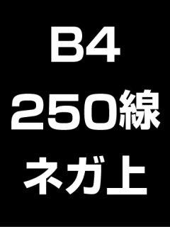 B4・250線・ネガ・膜面上の商品画像