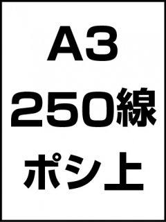A3・250線・ポシ・膜面上の商品画像