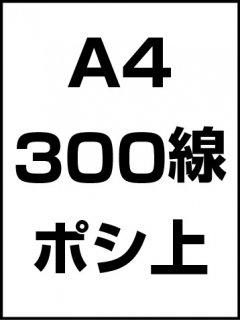 A4・300線・ポシ・膜面上の商品画像