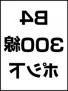 B4・300線・ポシ・膜面下の商品画像
