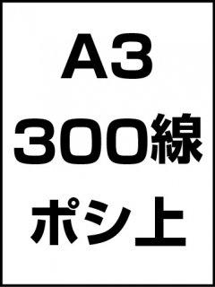 A3・300線・ポシ・膜面上の商品画像