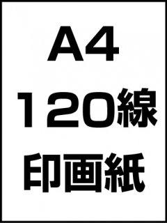 A4・120線・印画紙の商品画像