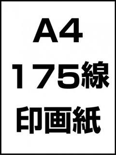 A4・175線・印画紙の商品画像