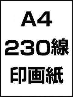 A4・230線・印画紙の商品画像