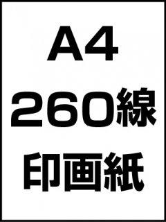 A4・260線・印画紙の商品画像