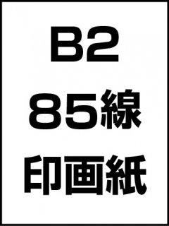 B2・85線・印画紙の商品画像