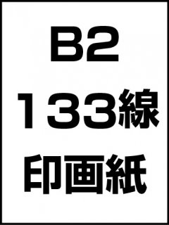 B2・133線・印画紙の商品画像