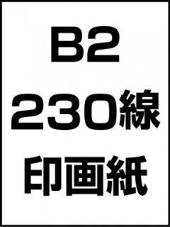 B2・230線・印画紙の商品画像