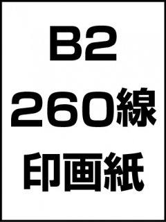 B2・260線・印画紙の商品画像