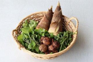 季節の野菜おためしセット(3〜4人前)【送料無料】