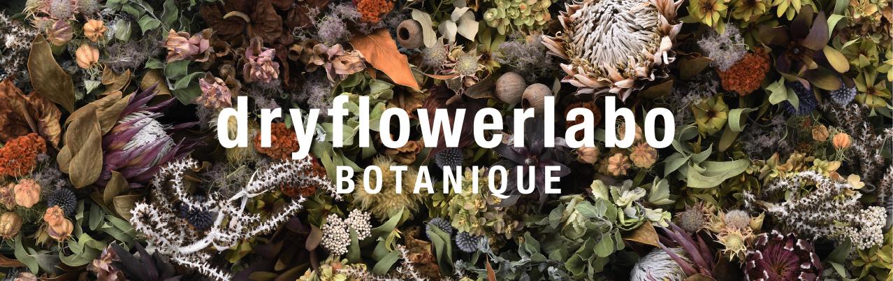 dryflowerlabo BOTANIQUE : 株式会社ボタニーク ドライフラワーラボ事業部
