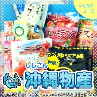 ■ししごんオススメ沖縄物産セット